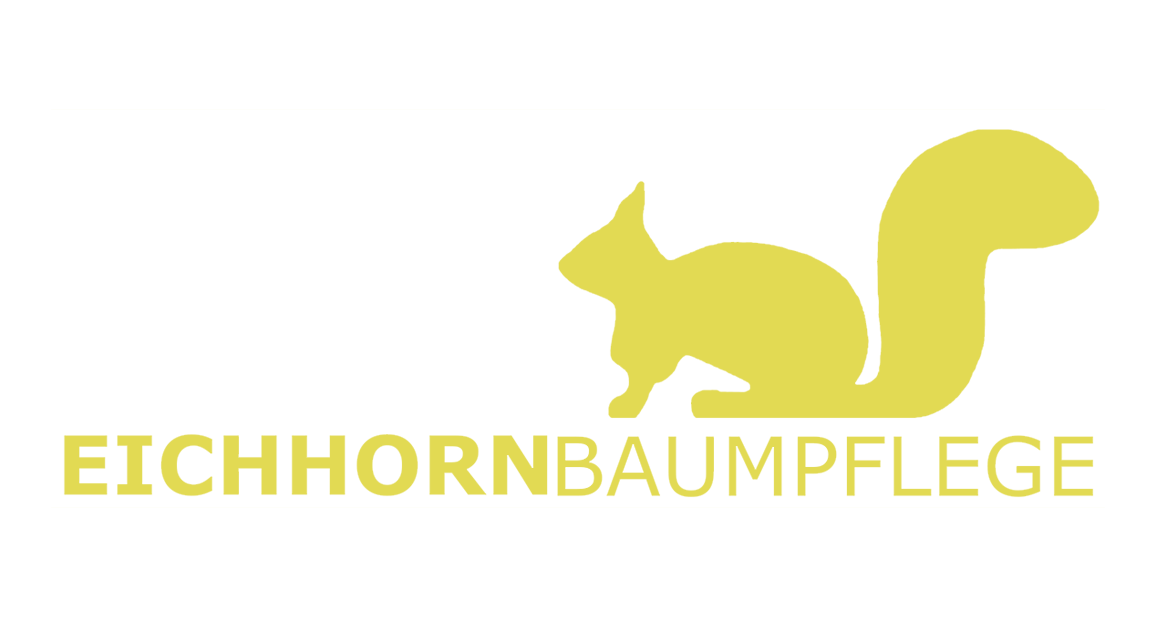 Eiichhorn-Baumpflege